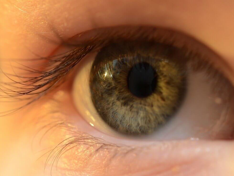 people-eye